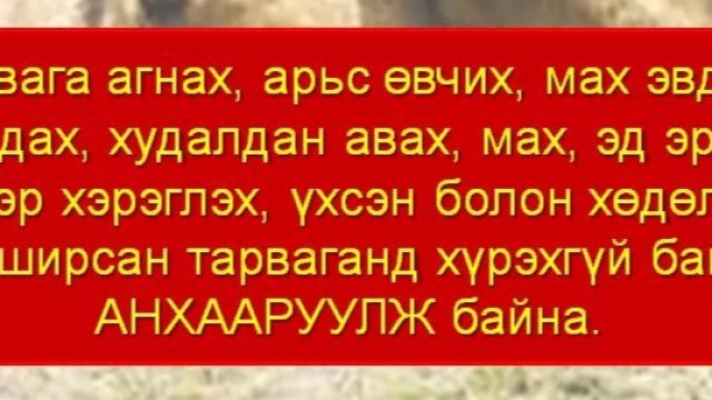 IMG_20200709_152959.jpg