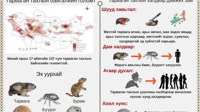 plague_1807201.jpg